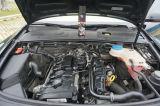エンジンの油取り器、産業強さの洗剤の油取り器