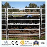 電流を通された頑丈な鋼鉄塀のパネルか牛パネル
