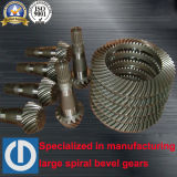 Welle für Erdölbohrung-Anlage für Zerkleinerungsmaschine-Spirale-Kegelradgetriebe