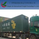 Commissionnaire de transport exprès de la distribution de logistique d'UPS TNT Federal Express de DHL de Chine dans le monde entier (l'Israël)