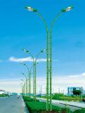 La mejor luz de calle solar del precio los 7m poste 50W LED