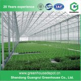 China Hot Sale Polycarbonate Sheet Vegetable Greenhouse Plastic