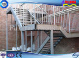 セリウムの証明書(SSW-S-010)が付いているカスタマイズされた鋼鉄階段プラットホーム