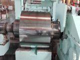 bobine en acier galvanisée de matériau de toiture de 0.125mm-0.8mm Q195 Dx51d Chine