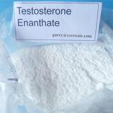 O teste Enan de Primoteston & a testosterona Enanthate promovem o metabolismo