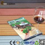 Qualitäts-EntwurfWPC Decking-Bodenbelag (TS-04B)