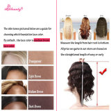 peluca llena de la onda de la carrocería del cordón del pelo indio de Remy de la alta calidad 1b/613