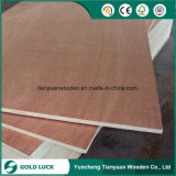Bintangor/Furniture (1220X2440mm)를 위한 Okoume Faced Commercial Plywood