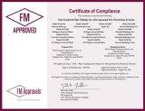 UL/FM/Ce/ISO genehmigte formbares Eisen-verlegte Rohrfittings