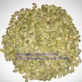 Nuevas semillas de calabaza de White Snow