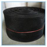 Квадратный мешок устрицы сетки