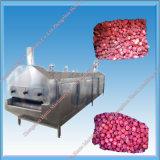 새로운 디자인 급속 냉동 기계