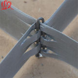 最もよい価格の鋼鉄によって補強されるGeocell
