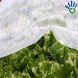 농업 잡초 방제 PP 비 길쌈된 직물