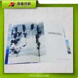 La 6ème impression de brochure de forum de ville de Binhai Eco