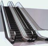 Escalera móvil de interior de 30 grados del elevador del transportador seguro directo del fabricante