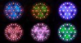 19X12W bewegliches Hauptlicht des Vierradantriebwagen-LED, Aura-Summen-Wäsche für Disco, DJ, KTV, Ereignis-Verein, Stadiums-Beleuchtung