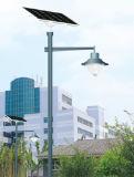 7m 폴란드 60W LED 램프 태양풍 터빈 가로등