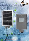 だけ1つの熱い販売10Wの太陽庭ランプすべて
