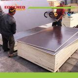Vietnam-indonesischer Film gegenübergestellter Shuttering Furnierholz-Hersteller