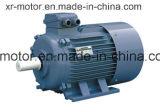 Motor de CA trifásico del GOST para la bomba de vacío 110kw