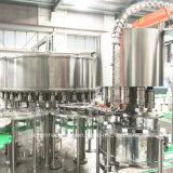 Machine de remplissage liquide à bouteilles en plastique