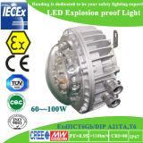 Indicatore luminoso protetto contro le esplosioni di RoHS LED del Ce di Atex da vendere