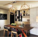 Baisse de décoration de lampe pendante de la couleur DIY/suspension moderne en laiton/lumière pendante