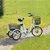 3つの車輪の電気三輪車の電気バイクEbike