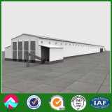 Automated Poultry Farming Shed / House