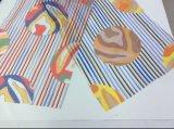 Tessuto stampato Organza Toothstick-A strisce per l'indumento di modo