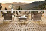 Mobilia stabilita del patio del rattan del giardino del patio del salotto di vimini esterno della Martinica (J629)