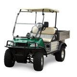 電気事業のカートの貨物トラックの小型トラック(DEL2023DUBSの白、2-Seater)