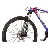Stile MTB (FP-MTB-A03) di Cameron della bici di montagna di velocità della qualità superiore 30