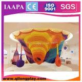 Arco-íris do design novo da venda quente (QL - 061)