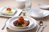 100% vaisselle de mélamine - vaisselle blanche de bol de dessert d'assiette de condiment/de mélamine qualité supérieur (WT4303)
