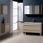 Vanité de salle de bains (SHV-C309)
