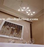 Diodo emissor de luz moderno da luz de teto com certificação do Ce