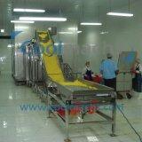 Blumenkohl-aufbereitende Maschine/Blumenkohl Quick-frozen Zeile schnelle Gefriermaschine