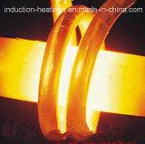 Производственная линия отжига топления индукции стального провода Wh-VI-300