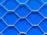 高品質の熱い浸された電流を通された六角形ワイヤー網
