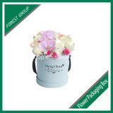 Wasserdichter Karton-Kasten für Blume (FP0200075)