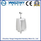 Yz1053正常な壁に取り付けられた陶磁器の尿瓶