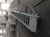 CCSの承認の船のための海洋の調節梯子
