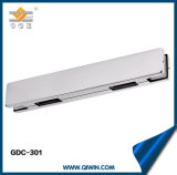 China Supplier Glass Patch Fitting