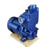 유도 펌프 또는 배수장치 펌프 /Magnetic 펌프 또는 화학제품 펌프 /Long 샤프트 좋은 펌프 또는 Rotory 펌프 또는 물 순환 펌프 또는 잠수할 수 있는 펌프 또는 진공 펌프 또는 승압기 펌프