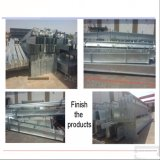 Bâtiments galvanisés en métal de structure métallique à vendre