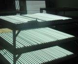 UL 승인되는 LED 관 빛, LED 점화 관, 보장 5 년을%s 가진 T8 LED 관