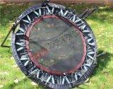 Mini trampolino dell'ammortizzatore ausiliario esterno popolare con il cerchio di pallacanestro da vendere