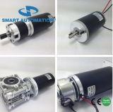 Щетка DC или безщеточный электрический двигатель, сила 10W 30W 50W 100W 200W 300W до 500W 1000W, 12V 24V до 220V